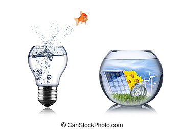 fish energy change concept