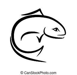 fish., esboço