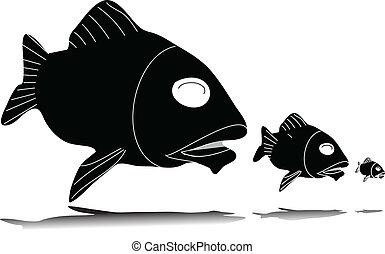 fish, eszik