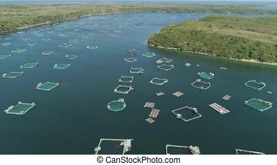 Fish farm in the sea. - Fish farm with cages for fish and...
