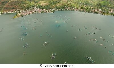 Fish farm on Lake Taal, Philippines, where locals breed fish for sale and food. Philippines, Luzon.