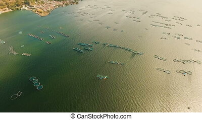 Fish Farm with floating cages in lake Taal. Aerial view: Fish farming with cages for whitebait on the surface of the water. Luzon, Philippines.