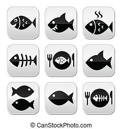 fish, fish, vecot, squelette, plaque