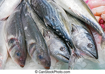 Fish for sale at a market