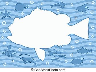 Fish Frame Decorative Cartoon Colourful Fish Page Border