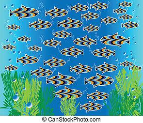 Fish Frolic   (motion illusion)