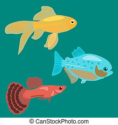 Fish guppy croquis image vecteur femme illustrations for Alimentation guppy poisson rouge