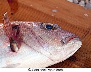 Fish head on wooden board
