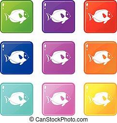 Fish icons 9 set