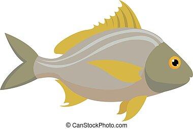 Fish, illustration, vector on white background.