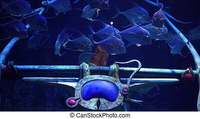 Fish in a big aquarium and oceanarium. Fish Tank. - Fish in...