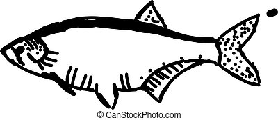 Fish in sea, illustration, vector on white background.