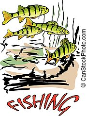 fish in the river