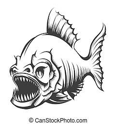 fish, incisione, piranha, illustrazione