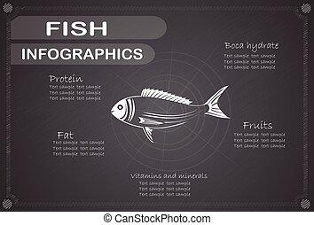 Fish  infographics, Vector illustration.