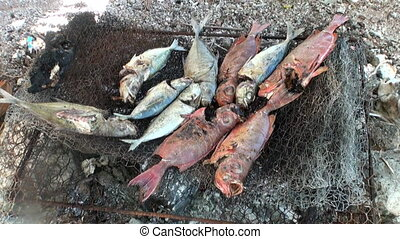 Fish is fried on charcoal fire. Cooking food after fishing....