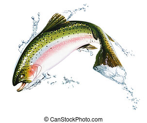 Fish jumping out of the water, with some splashes. Photorealistic airbrush illustration, on white background. Clipping path included.