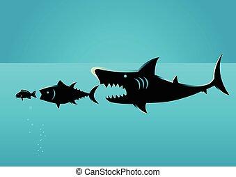 fish, kisebb, zsákmány, nagyobb