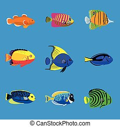 fish, komplet, ilustracja, ocean, tropikalny, wektor