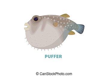 fish., locomotora, aislado