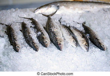 Fresh fish displayed in a bed of ice