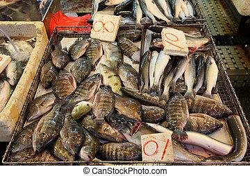 Fish market in Hong Kong