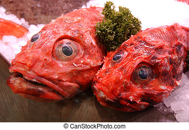 red coloured sea fish refrigerated with ice on a market