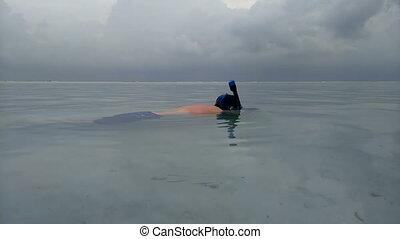 fish, masque pour plongée sousmarine, eau, vidéo, sous, appareil photo, pousses, tir, nage, sharks., homme