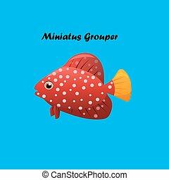 fish, miniatus, mérou