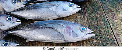 Fish on a wooden background