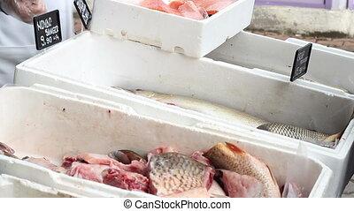 Fish on Market Stalls