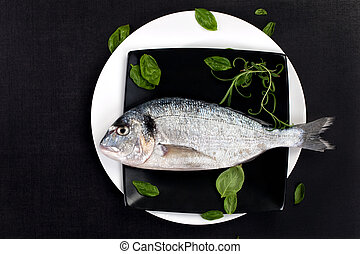 Fish on plate with fresh herbs, top view.
