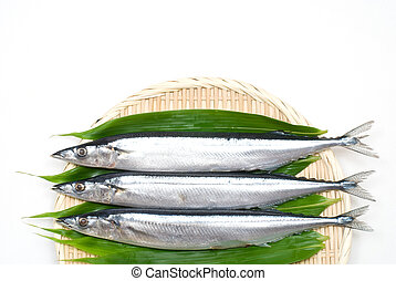 Fish on the bamboo sieve - Three raw pacific saury on the...