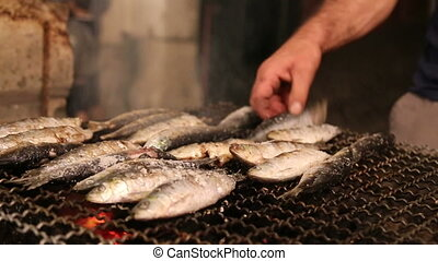 Fish on the grill - Shot of Fish on the grill