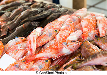 Fish on the market - Big heap of fresh cartilaginous fish on...