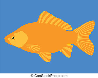 fish, oro