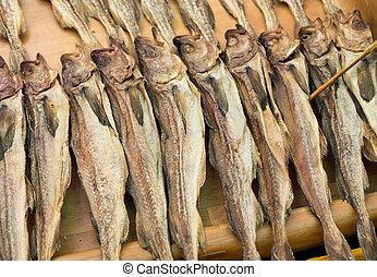 fish, salé, conservé
