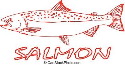 fish., salmone