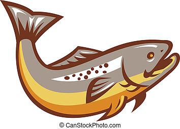 fish, sauter, retro, truite