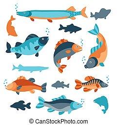 fish., set, oggetti, decorazione, booklets, bandiere, vario, pubblicità disegno, flayers