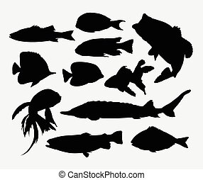 fish, silhouettes, animal