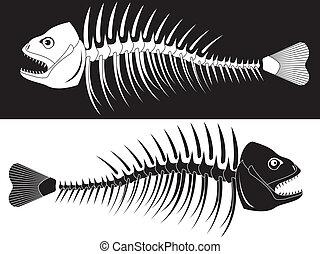 fish, skelett