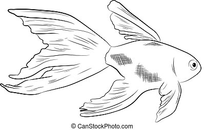 Fish Sketching Vector Illustration
