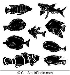 fish., skicc, szórakozottan firkálgat, ábra, vektor, tenger
