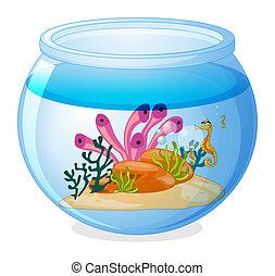 Fish tank - Illustration of a fish tank and seahorses