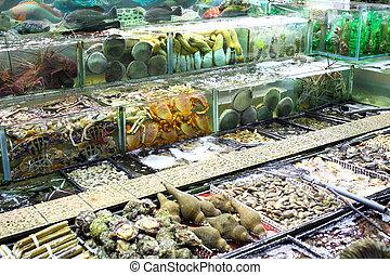 Fish tank in market