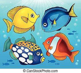 fish, temat, 5, rafa, wizerunek, koral