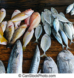 Fish tuna on a wooden background