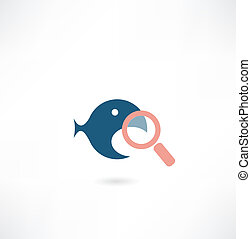 fish under the magnifying glass icon