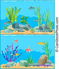 Fish Underwater Scape Set Vector Illustration - Fish...